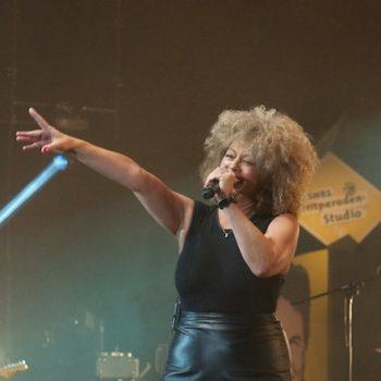 Tina Turner Doubleshow
